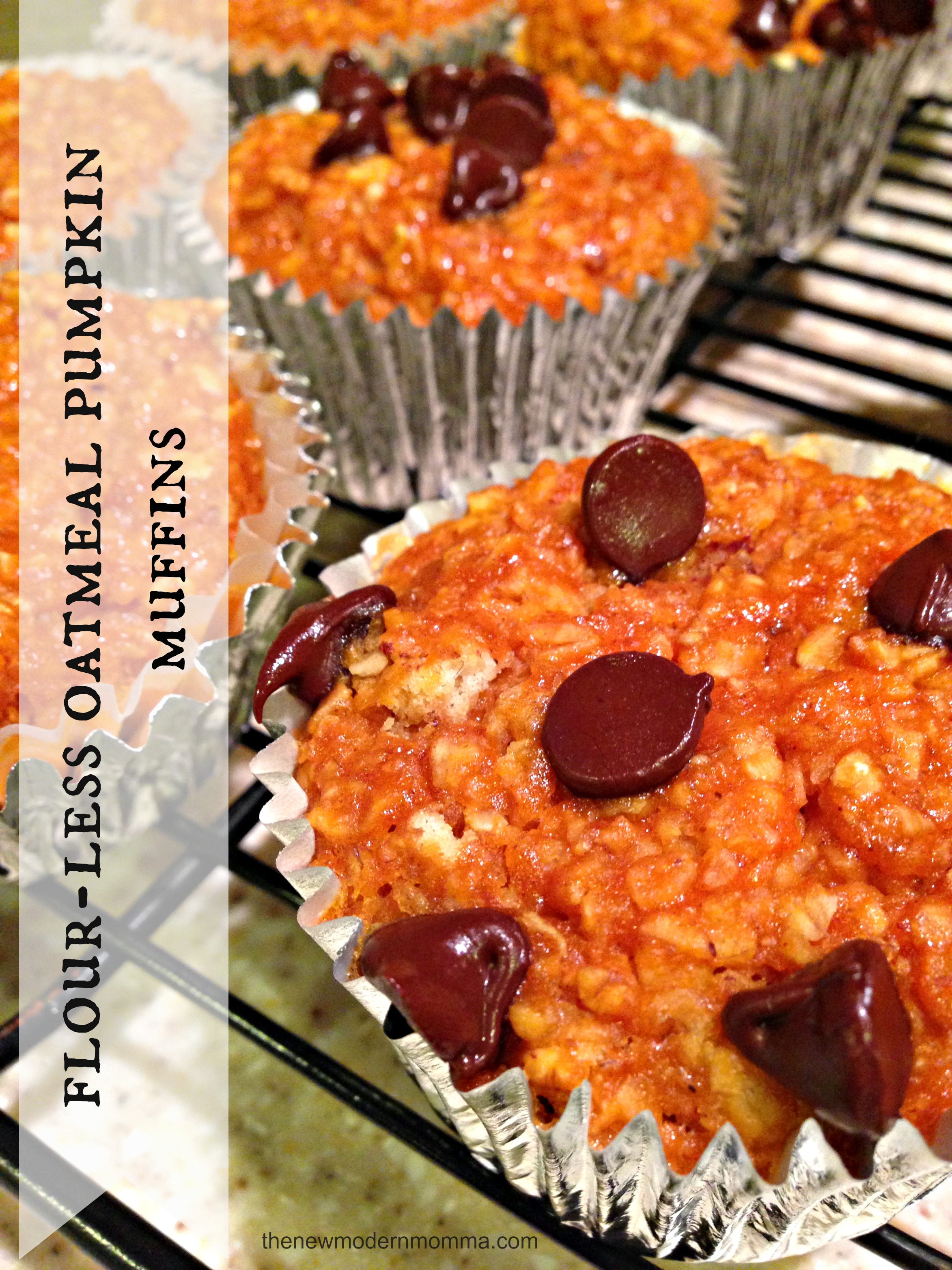Flour-less Oatmeal + Pumpkin Muffins :: Tasty Tuesday