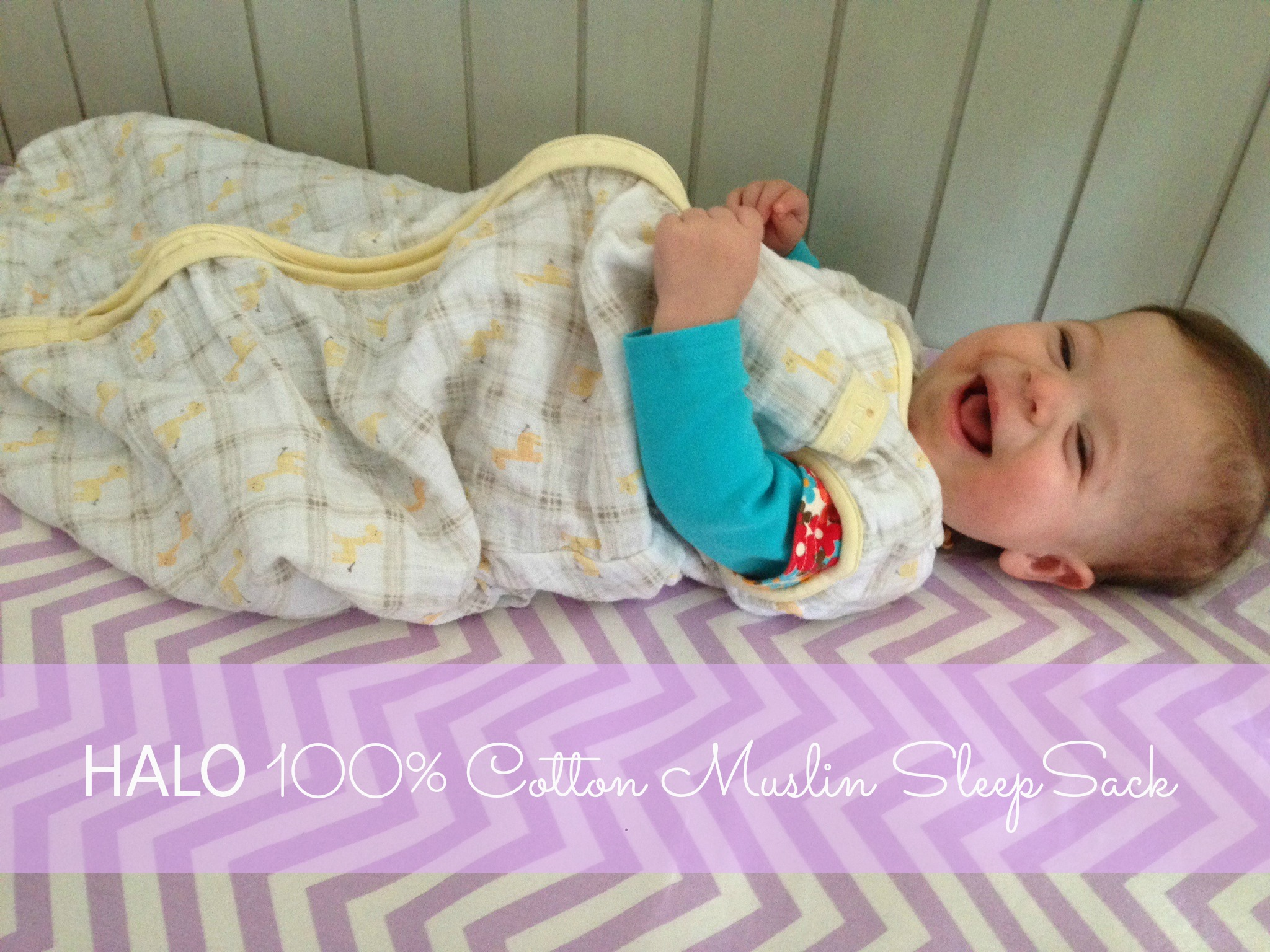 HALO SleepSacks Now Available in Cotton Muslin