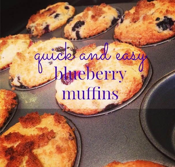 Easy and Quick Blueberry Muffin Recipe