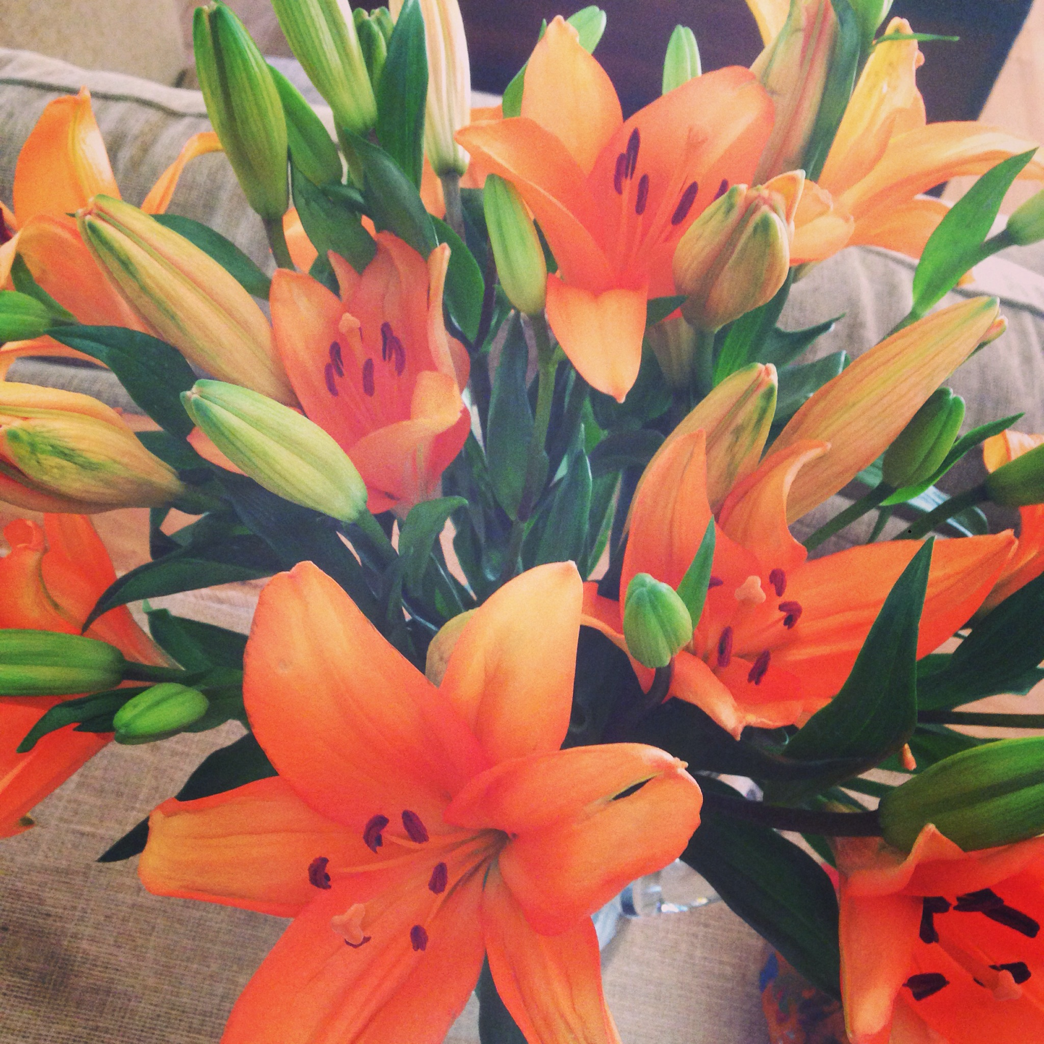 The Bouqs Fresh flowers Delivered The New Modern Momma