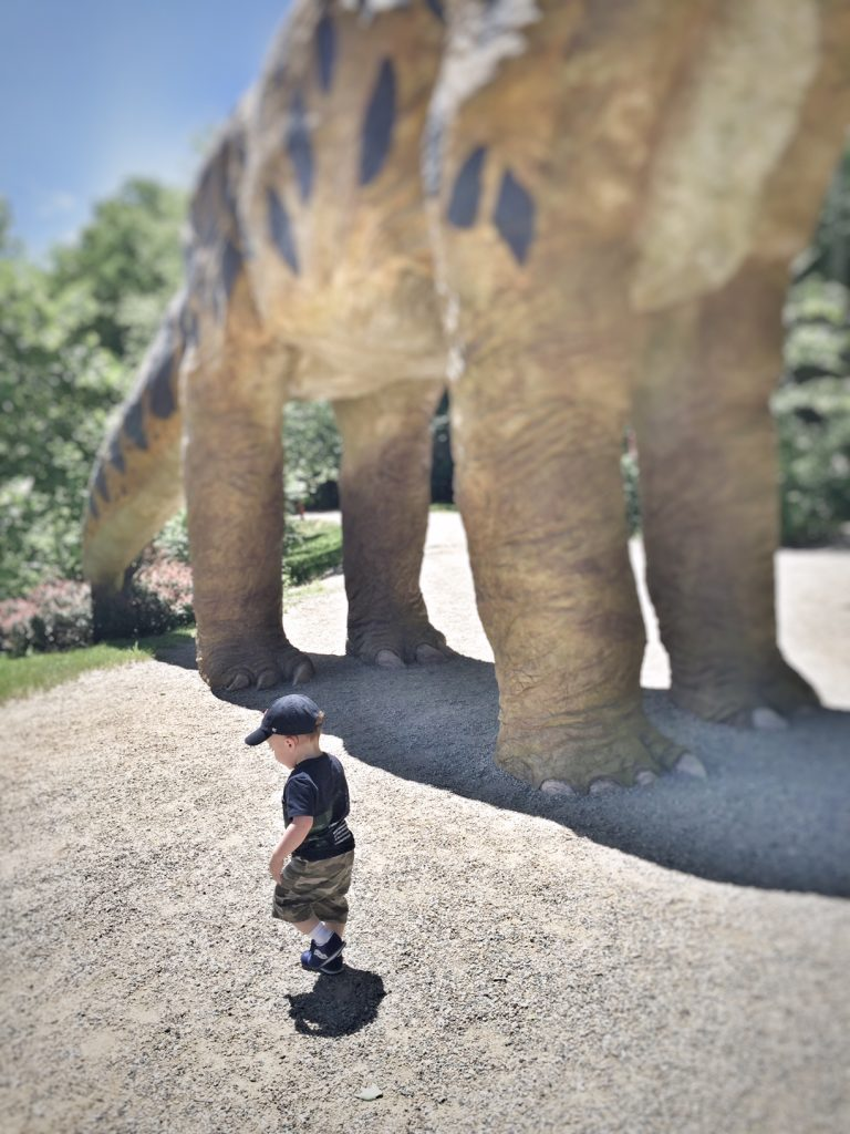the dinosaur place - the new modern momma