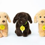 Make your Dog a Star on Woofpup.com