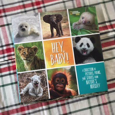 National Geographic Kids Hey, Baby!: A Collection of Pictures, Poems, and Stories
