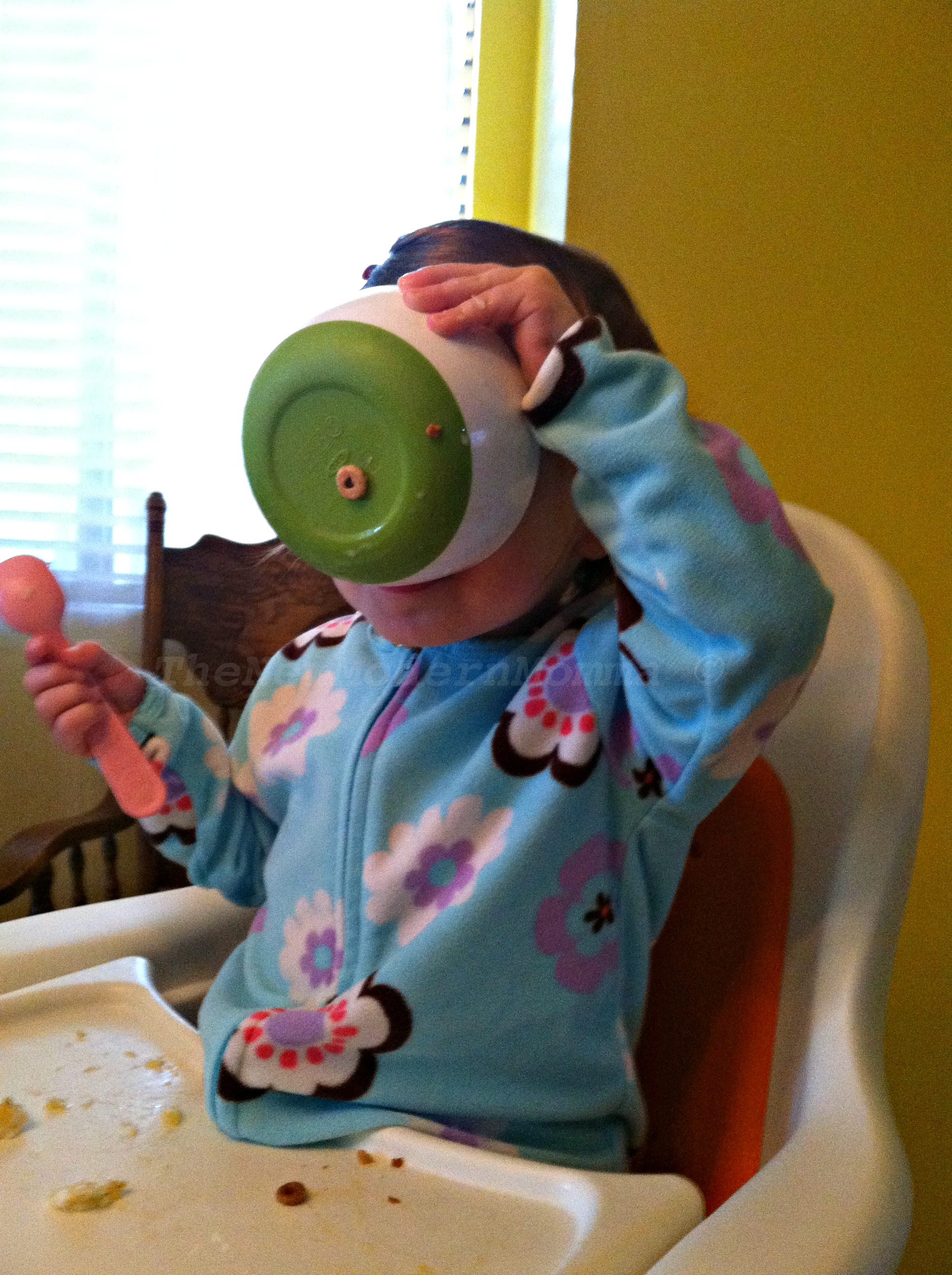 Toddler Meals | My Tips to Make it a Success