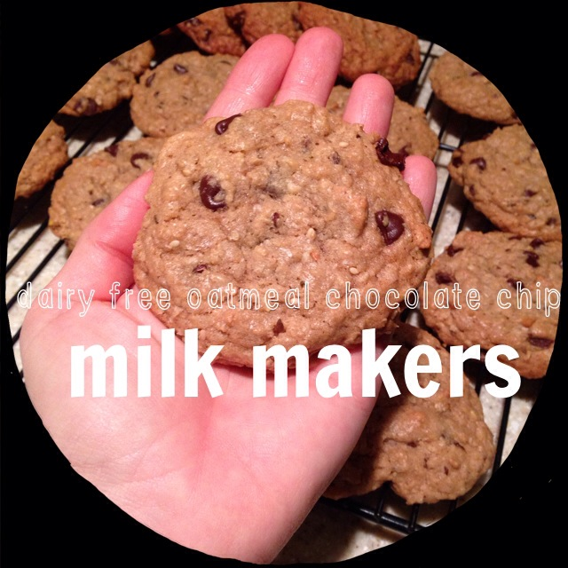 Dairy Free Oatmeal Chocolate Chip MilkMakers :: Tasty Tuesday