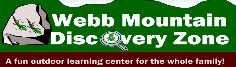 Summer Camp at Webb Mountain Discovery Zone